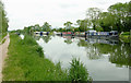 SO7304 : Canal north-west of Slimbridge, Gloucestershire by Roger  Kidd