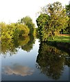 TL4356 : Grantchester Meadows: evening reflections by John Sutton