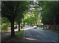 TL4556 : A June evening in Brooklands Avenue by John Sutton