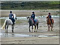 NX4746 : Riding Lesson on Garlieston Beach by Andy Farrington