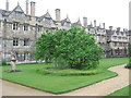 SP5106 : Fellows' Garden Sundial Lawn, Merton College by Virginia Knight