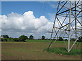 TM4298 : Pylons over farmland by Roger Jones