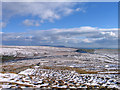 SD7986 : Snowed moorland south-east of Great Knoutberry Hill by Trevor Littlewood