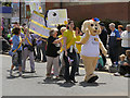 SD8010 : Bury Carnival Parade by David Dixon