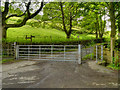 SJ9999 : Gate, Brushes Road/Pennine Bridleway by David Dixon