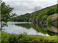SJ9999 : Walkerwood Reservoir by David Dixon