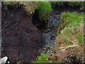 NN4213 : Water oozing from peat west of Cruinn Bheinn above Loch Katrine by ian shiell