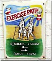 TV4898 : Faded 'exercise' sign, Seaford esplanade by nick macneill