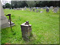 SZ1999 : All Saints, Thorney Hill: churchyard (2) by Basher Eyre