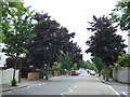 TQ0996 : Cassiobury Park Avenue, Watford by Malc McDonald