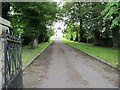 J0617 : The drive leading to the parochial house at Jonesborough by Eric Jones