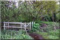 SU7772 : Gate into Sandford Mill Copse by Steve Daniels