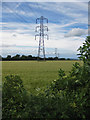 SE7772 : Power line crossing a barley field by Pauline Eccles