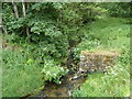 SN9768 : Rhyd-hir Brook flows away from Rhyd-hir Bridge, Rhayader by John Grayson