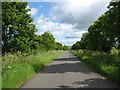 TL1076 : The lane to Old Weston by David Purchase