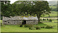 SD1992 : Field barn in Duddon valley by Trevor Littlewood
