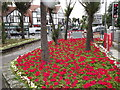 TQ2064 : Flower Bed on Kingston Road by Colin Smith
