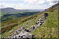 SD7380 : Ruined wall on the flank of Whernside by Roger Templeman