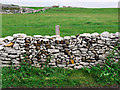 D1550 : Drystone wall, Rathlin Island by Rossographer