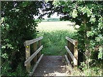 TL6344 : Footbridge by Keith Evans