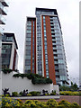 TQ4080 : Tower Block near Royal Victoria Dock Station by Christine Matthews