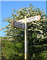 SX6977 : Signpost, Blackaton Cross by Derek Harper