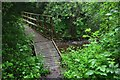 NT5618 : Footbridge, Denholm Dean by Jim Barton