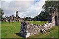 R4746 : Adare Friary (2) by Mike Searle