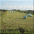 TA0823 : Bales by David Wright