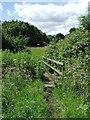 TL5950 : Footbridge by Keith Evans