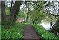 TQ0110 : Monarch's Way by the River Arun by N Chadwick