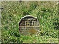NZ0455 : Gravestone in St Andrew's churchyard by Oliver Dixon