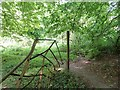 SP9310 : Old metal fence and gate, Park Wood by Rob Farrow