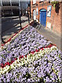 SU9949 : Union Flag Flowerbed by Colin Smith