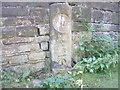 SJ9598 : Benchmark on the milestone on Tame Aqueduct by John Slater