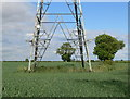 SK7016 : Electricity pylon at Bran Hills by Mat Fascione