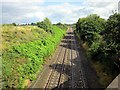 SJ4563 : The Chester to Crewe Railway Line at Waverton by Jeff Buck