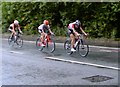 TQ2175 : The women's Olympic road race at Barnes Common: trailing home (1) by Stefan Czapski