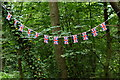 TQ2053 : Bunting for Team GB by Peter Trimming
