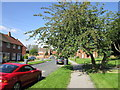 SE3239 : West Park Grove, Park Villas, Leeds by Ian S