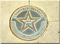 Photo of Clinton Woods bronze plaque
