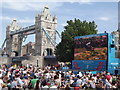 TQ3380 : Potters Fields - Big Screen by Colin Smith