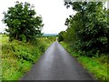H6327 : Road at Blackraw by Kenneth  Allen
