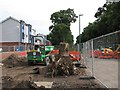 SK5638 : Queen's Walk: tramway tree stump removal by John Sutton