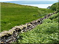 NG4944 : Old stone dyke by James Allan
