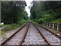SK0049 : Looking north on the Churnet Valley Railway by Andrew Abbott