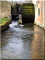 SP1622 : Water mill wheel in Lower Slaughter by Philip Jeffrey