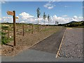 NT5134 : A footpath at Abbotsford Visitor Centre car park by Walter Baxter