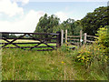 SD6324 : Gate and Stile by David Dixon