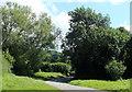 ST5857 : 2012 : Lane crossing Bushy Common  by Maurice Pullin